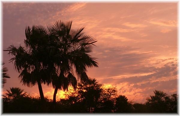 ... der Urwald brennt, Sonnenuntergang an der Flugpiste