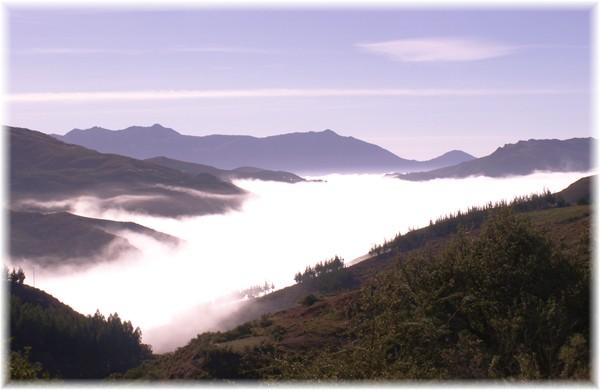 ... über dem Nebelmeer